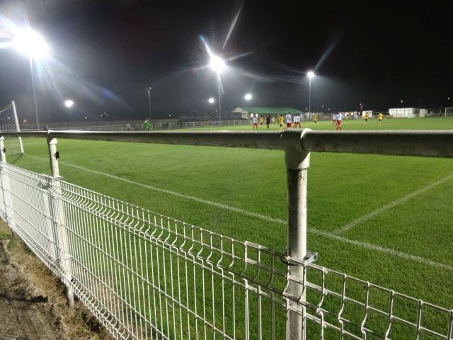 Basford United (14)