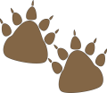 bear-paw-prints