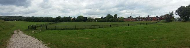 Goldenhill Wanderers (Trubshaw Cross)